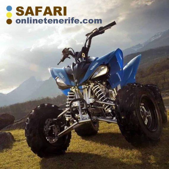 Safari Online Tenerife
